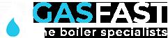 Gas Fast white logo transparent